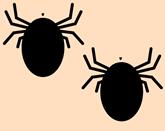 bugs-312774_640