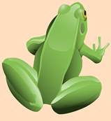 frog-157934_640