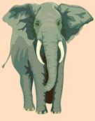 elephant-24722_640